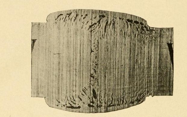 Makrographisches Schnittbild einer Thermitschweißnaht, das Poren und Lunker zeigt.