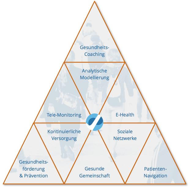 Instrumente des Versorgungsmanagements: Gesundheitscoaching, Analytische Modellierung, Telemonitoring, E-Health, Teemedizin, Gesundheitsförderung und Prävention, Kontinuierliche Versorgung, Gesunde Gemeinschaft, Soziale Netzwerke, Patientennavigation