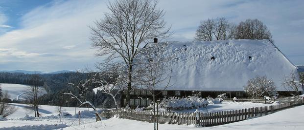 Winter am Titisee, Schwarzwald