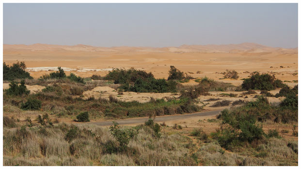 Dunes côtières à Swakopmund ; Namibie