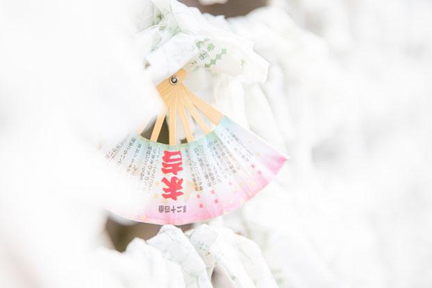 出張撮影 豊玉氷川神社 練馬区 神社巡り 女性カメラマン 料金 安い