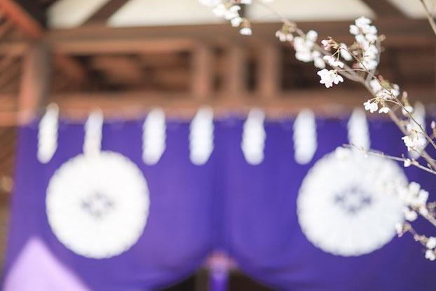 東京 出張撮影 家族写真 女性カメラマン 出張カメラマン 東京大神宮