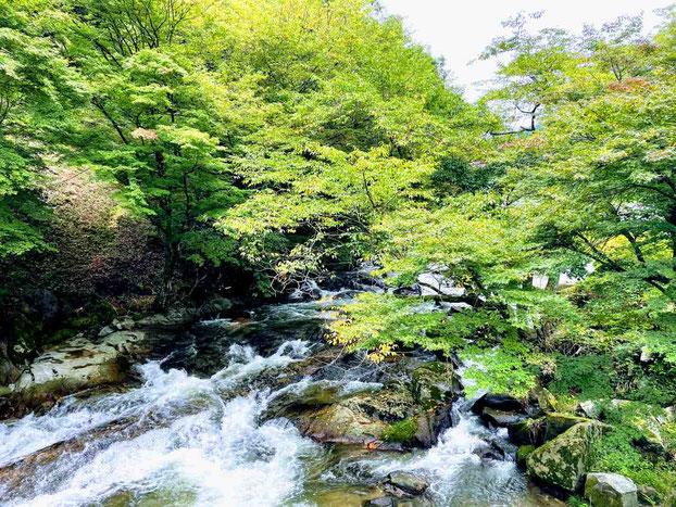 鮫川村 強滝(こわだき)