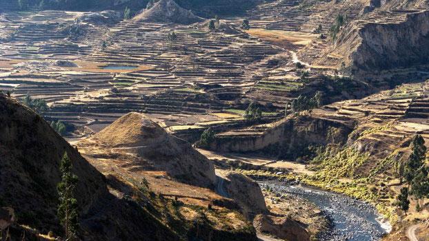 Peru Reise: Colca Canypn. Reisebericht.