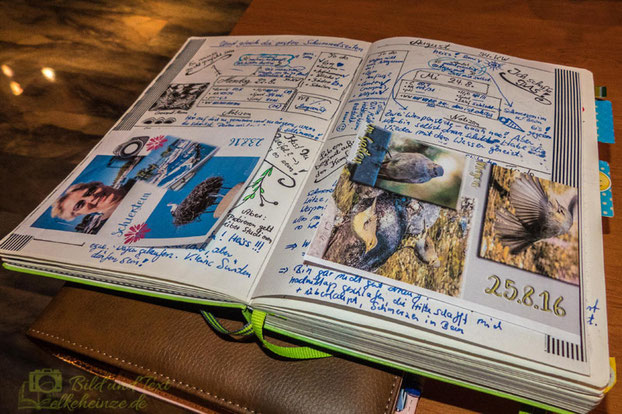 Elke Heinze Bullet Journal
