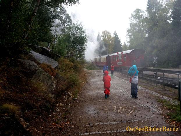 Diesig, regnerisch und so viel zu entdecken
