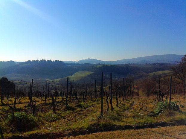 Casa Lucii, San Gimignano, Toscana, Italia. Itinerari di vino. Blog Etesiaca