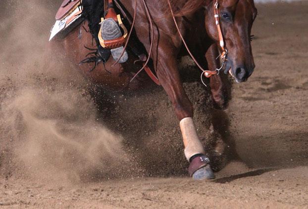 Reinhard Hochtreiter stellt Reining-Pferde auf Turnieren vor und coacht Reining-Reiter auf Turnieren.