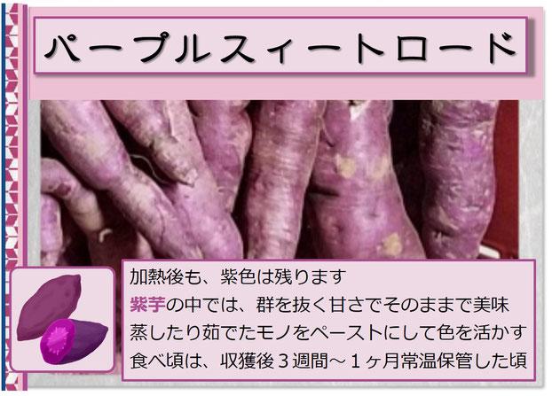 パープルスィートロード【紫芋】 アイコン 和×夢 nagomu farm