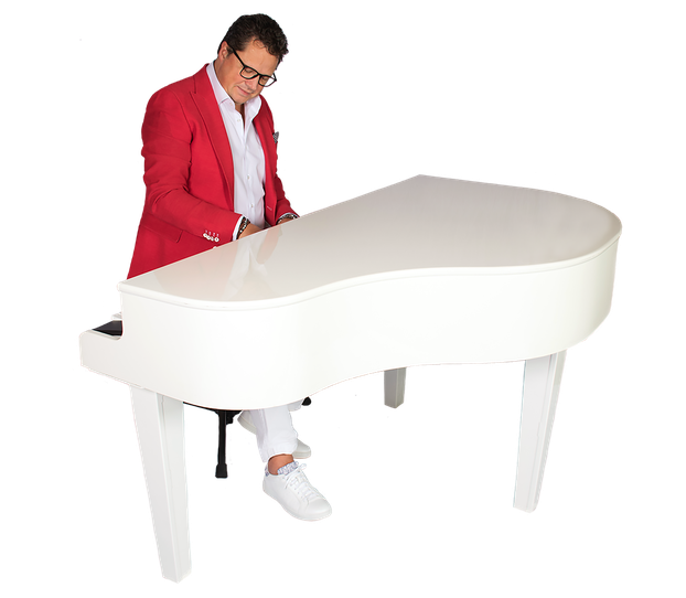 piano, entertainer, hugo franks