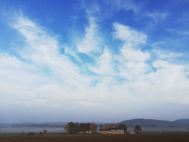 Kraftquelle,Nebelbild, Nebelspaziergang, Auszeit vom Alltag, neue Kraft sammeln, Natur genießen, frei sein