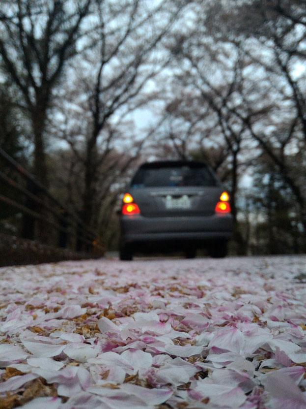 バリバリ元気の愛車[20万キロ走行超過]Tinyで車検を