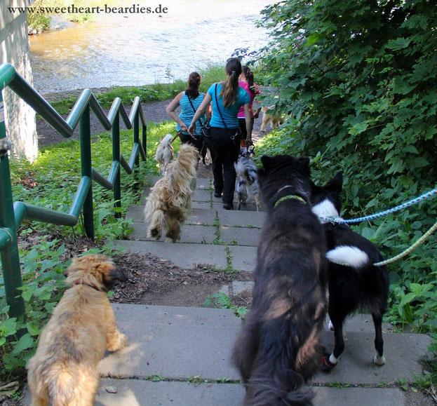alle die Treppe runter, hoffentlich kommt uns niemand entgegen ;-)