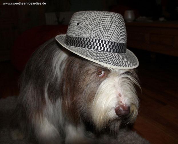 Naja... Der Hut steht mir wirklich nicht!