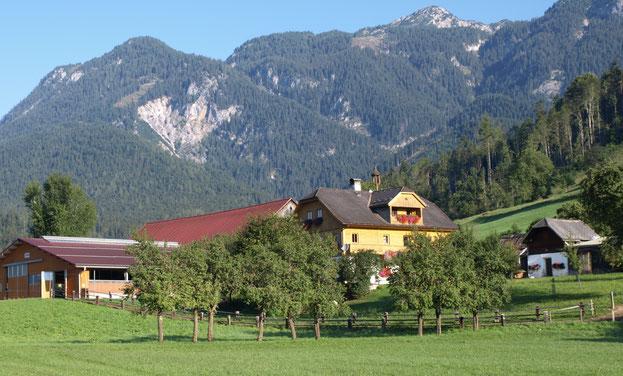 Das Foto zeigt den Knerzlhof in Weissenbach bei Haus im Ennstal im Frühling vor der wunderbaren Bergkulisse des Dachsteins