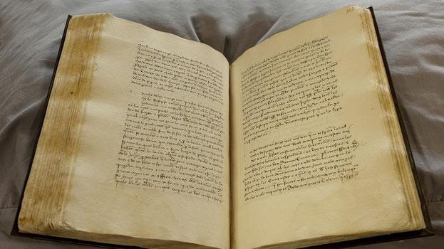 Imatge del manuscrit de 'Curial e Güelfa' (Asís G. Ayerbe)