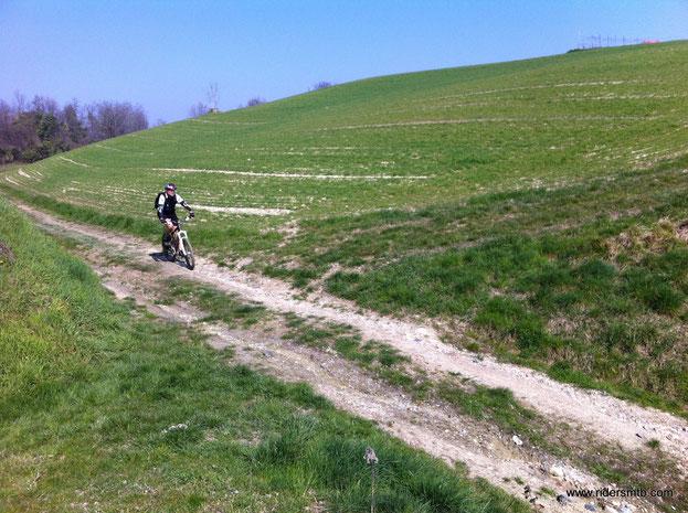 attraversiamo colline tipiche dell'Astigiano
