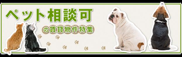 ※「トレインビュー新居浜」は無料のドッグラン付で ペットと安心して暮せる一戸建賃貸(犬猫共)です!