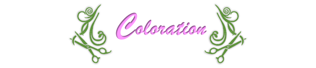 Coloration La Maison du Coiffeur