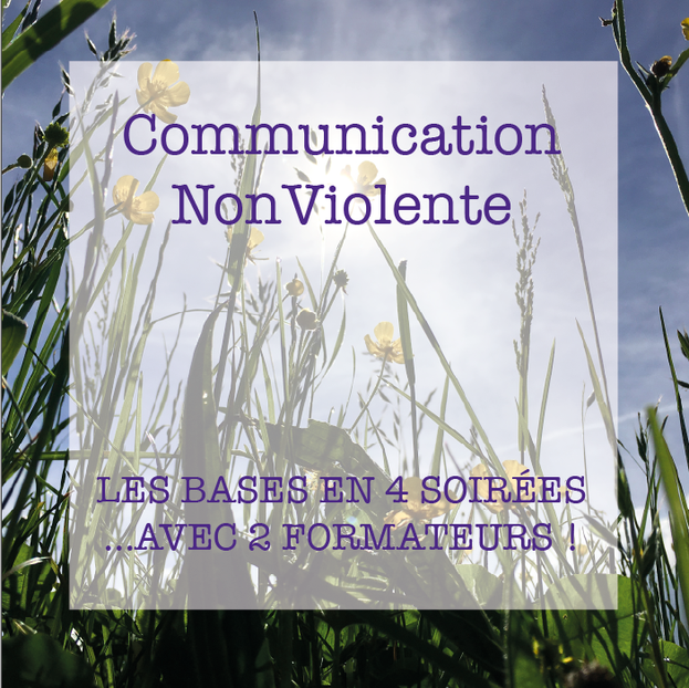 formation en communication cnv non violente