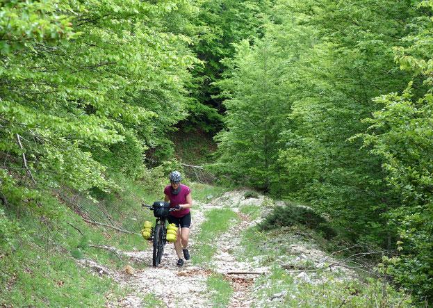 Abruzzen, Bikepacking, Biketour, Italien, Berghuhn