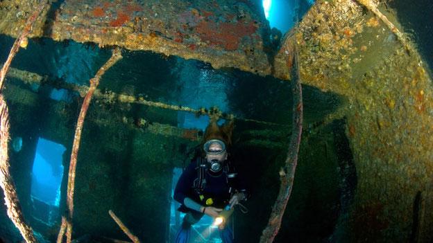 Foto: iStock.com/Frogkick