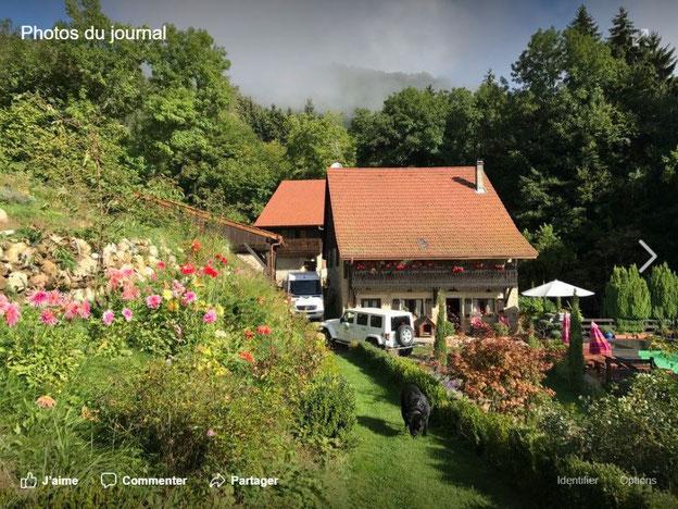 Stages des Croqueurs de Jardin dans le Luberon