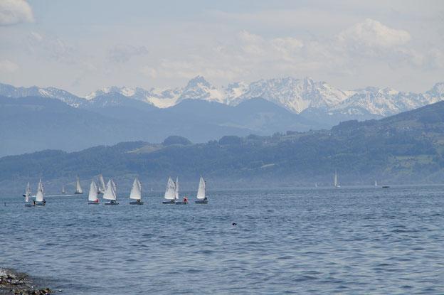 Bodensee Yachtschule als Partner