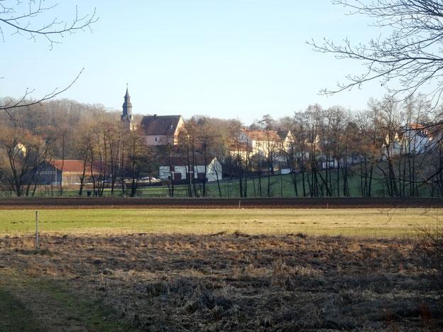 Blick auf St. Johannis über die Wiesen am Roten Main