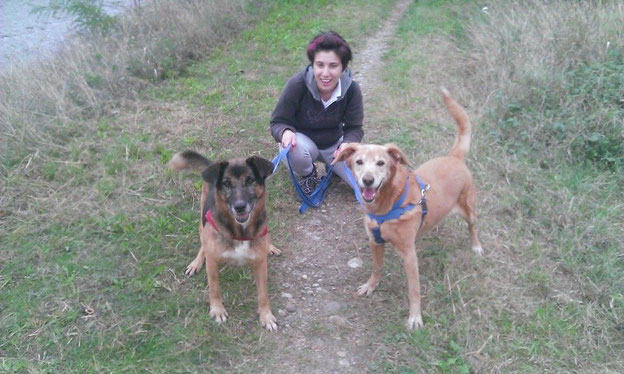 Erinnerung an glückliche Stunden, soweit es die im Tierheim geben kann: Luna und Charly im Oktober 2014 beim Spaziergang mit Elena Saleri. Danke, an Elena, die uns dieses Bild zur Veröffentlichung zur Verfügung gestellt hat.