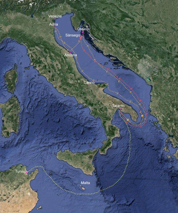 Saraceni Mare Adriatico 841-842