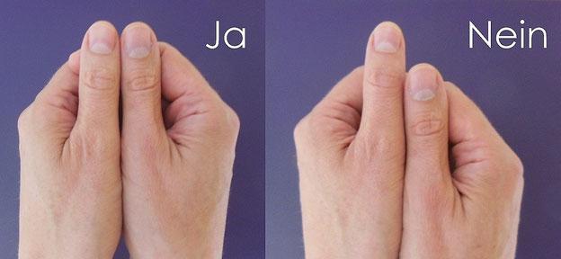 Anhand der unterschiedlichen Armlängen erkennt man ein Ja (Entspannung) oder ein Nein (Stress)...