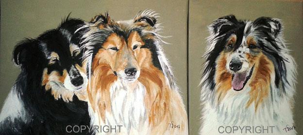Hundeporträts: 3 Collies - Halbporträts. Schwarzer und braun-weißer Collie schmiegen sich aneinander. Collie tricolor mit geöffnetem Maul, Tiermalerei, gemalte Tierportraits nach Fotovorlage, Tiere zeichnen lassen