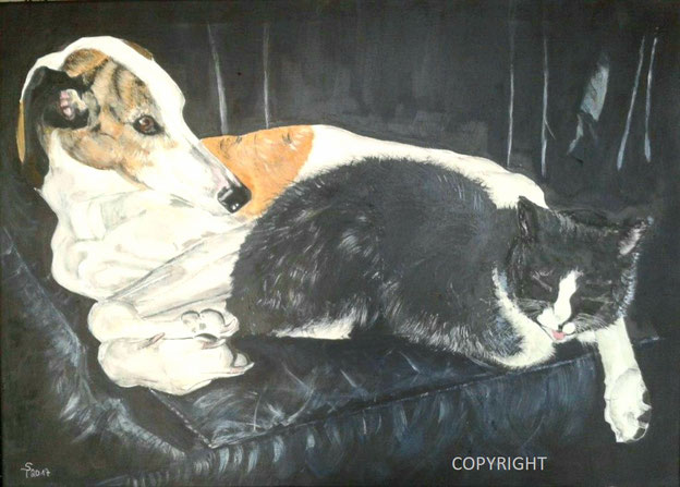 Hundeporträt, Katzenportrait