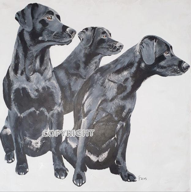 Hundeporträt: 3 schwarze Labradore sitzend, Tiermalerei, gemalte Tierportraits nach Fotovorlage, Tiere zeichnen lassen
