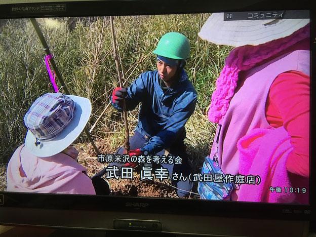 あいチャンネル 武田屋作庭店 米沢の森