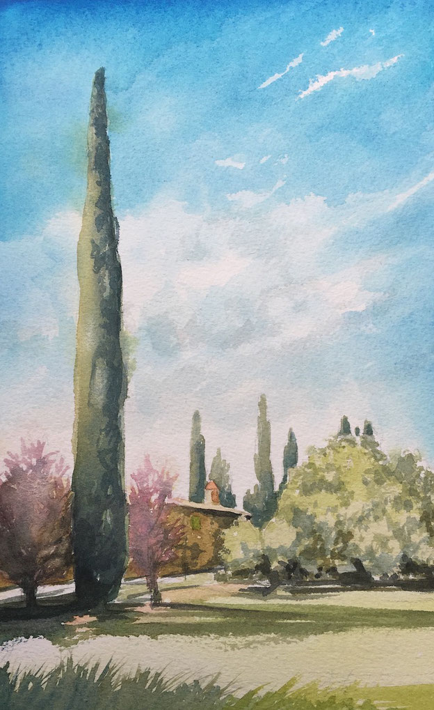 Plein air painting workshop in the heart of Tuscany with fine American artist Jill Williams