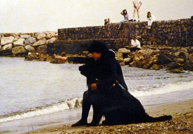 Mie Uka le jour de son Brevet en Mer: Une chienne exceptionnelle ! Tu es toujours dans mon coeur ma belle