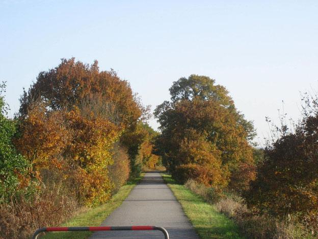 Wieder auf dem Schinderhannes-Radweg