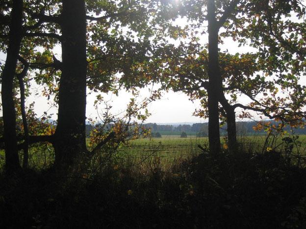 Auf dem Schinderhannes-Soonwald-Radweg im Hunsrück