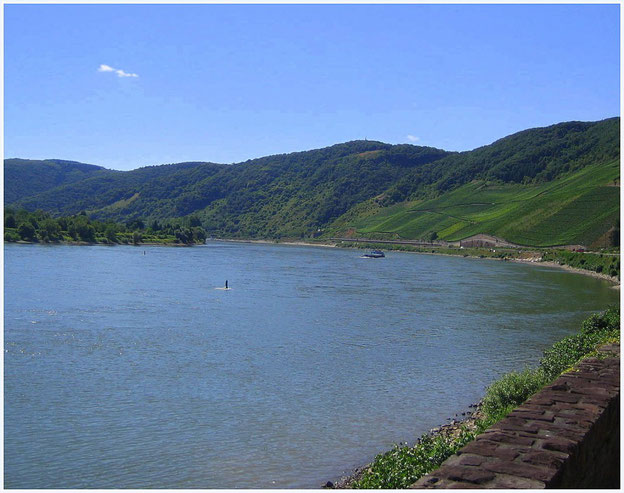Rhein beim Bopparder Hamm