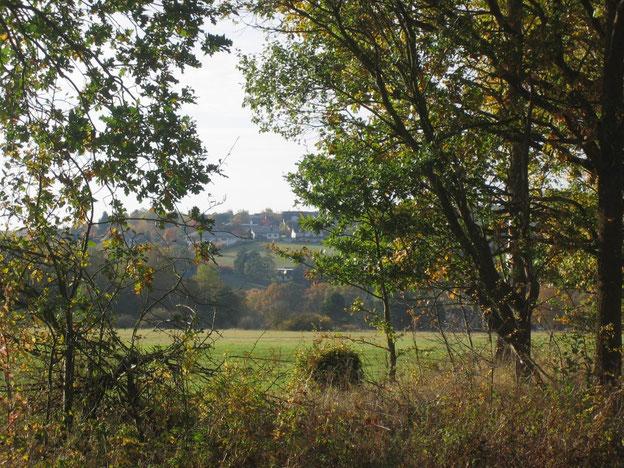 Riesweiler am Schinderhannes-Soonwald-Radweg
