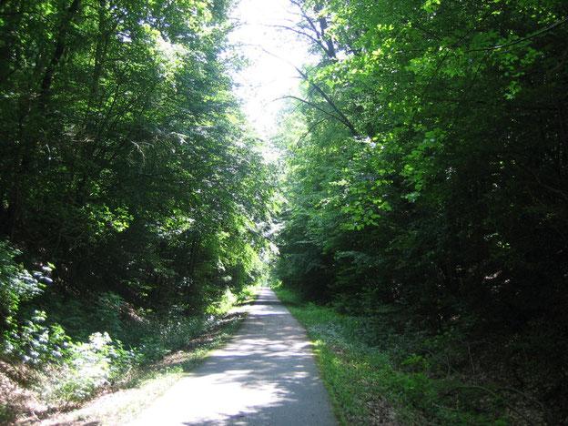 Schinderhannes-Radweg/Hunsrück