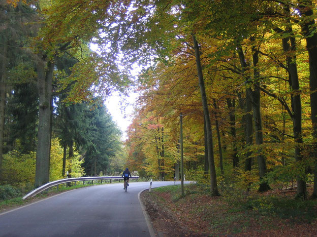 Auf dem Weg nach Budenbach