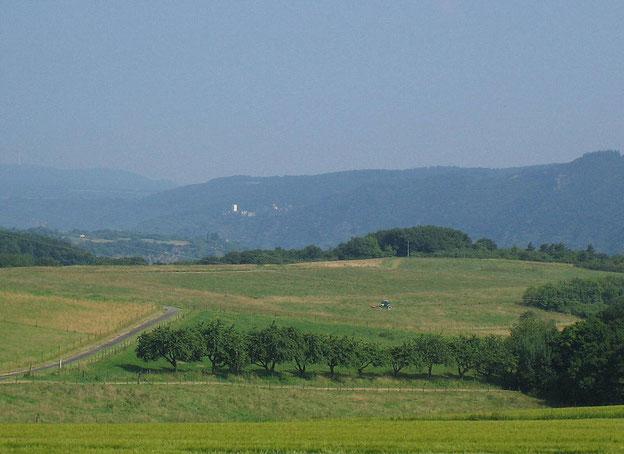 Blick von den Hunsrückhöhen auf Burg Sterrenberg und Burg Liebenstein am Rhein (Suchbild :-))