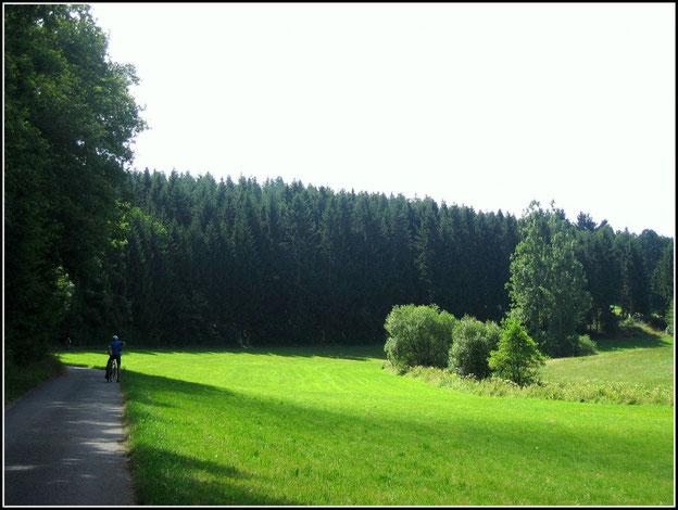 Auf dem Schinderhannes-Soonwald-Radweg