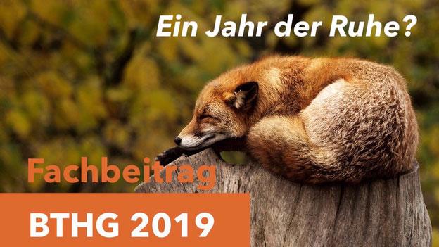 BTHG, Bundesteilhabegesetz Änderungen 2019 und 2020