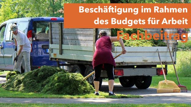 Beschäftigung im Rahmen des Budgets für Arbeit, Eingliederungshilfe, BTHG, kostenloser Fachartikel