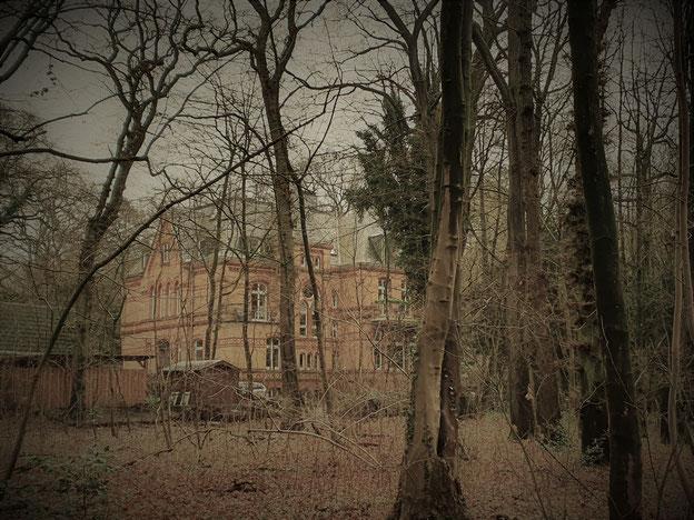 Mutzenbecher Villa im Niendorfer Gehege, Hamburg