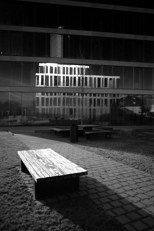 Bonn, monocrom, schwarz-weiss, black and white, Schwarzweissfotografie, kreative Fotografie, Fototipps, Ricoh GRiii, Ricoh GR3, La Bonn heuure,